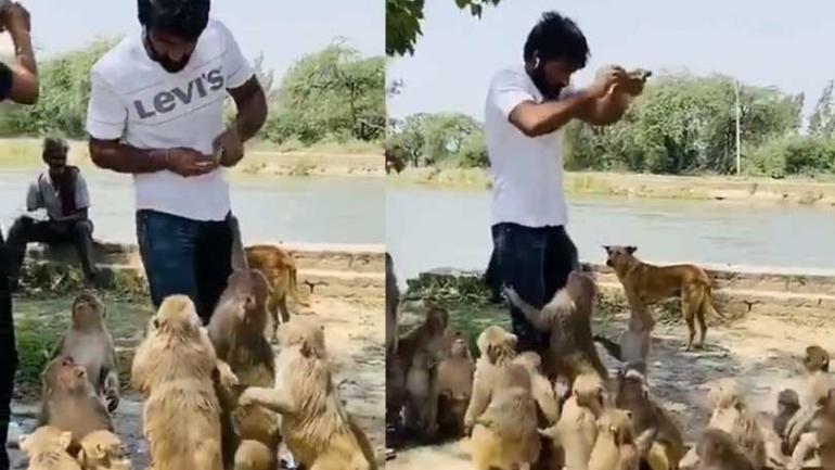 Social Room: Yogeshwar Dutt feeds hungry animals amid coronavirus lockdown; Watch Video