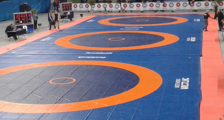 Senior National Wrestling : WFI finalizes Noida, Agra for freestyle, women's national wrestling championships
